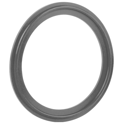 Kalrez® Gasket – LS390 Tri-Clamp® Gasket featured Image